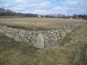 stone fence 001